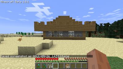 minecraft !!!!