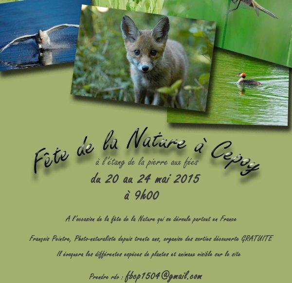 - Fête de la nature mai 2015 -