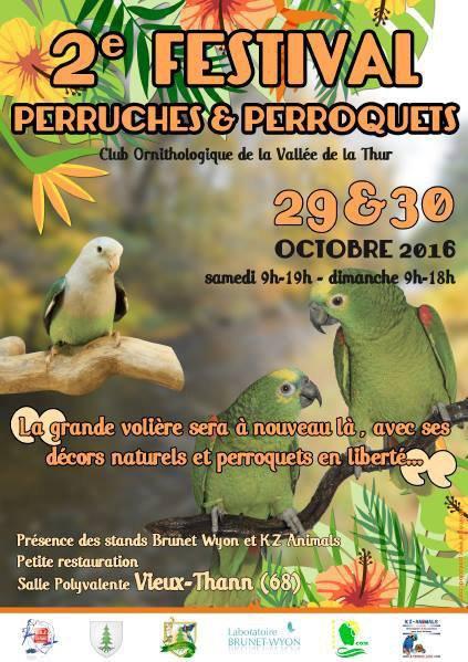 Festival perruches et perroquets