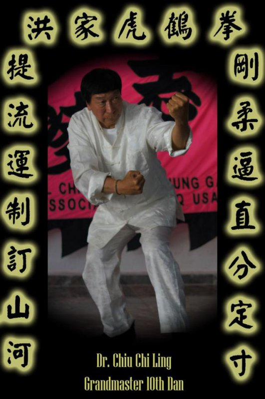 Grand Master Dr Chiu Chi Ling 10 Th Dan