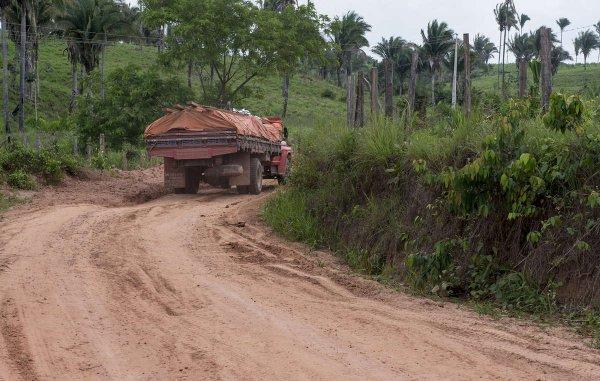 Brésil : une catastrophe sanitaire frappe des Indiens récemment contactés