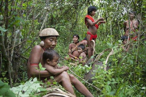 Le pape François appelle à la protection des peuples indigènes et de leurs territoires