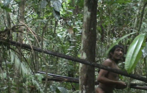 Les Kawahiva d'Amazonie à nouveau menacés par l'homme politique 'le plus corrompu du Brésil