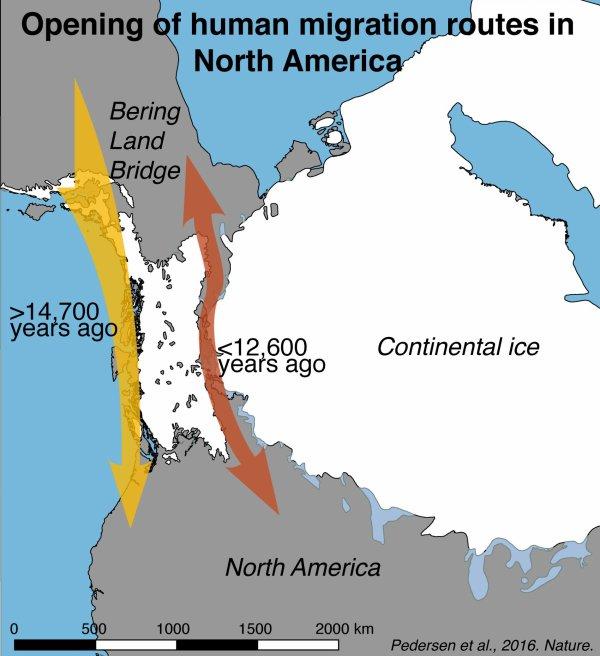 Les premiers humains en Amérique sont-ils arrivés en bateau ?