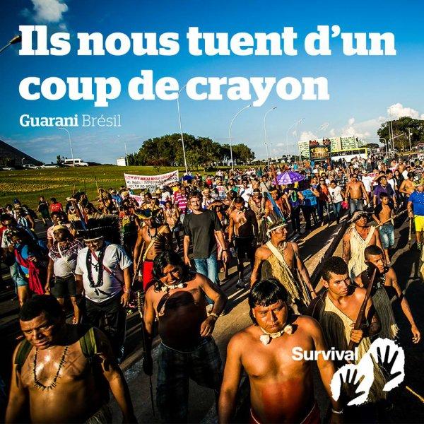 ILS NOUS TUENT D'UN COUP DE CRAYON