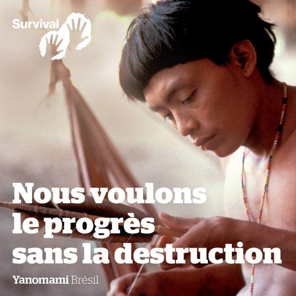 NOUS VOULONS LE PROGRES SANS LA DESTRUCTION