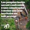 LES PEUPLES ISOLES SERONT CONFRONTES A UNE CATASTROPHE A MOINS QUE LEUR TERRITOIRE NE SOIT PROTEGE