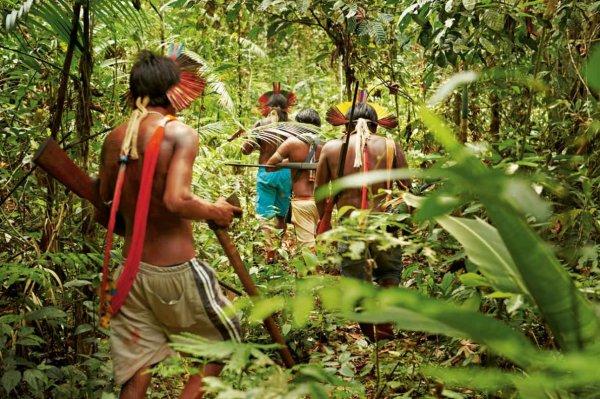 Kayapo, la tribu qui voulait reconquérir l'Amazonie