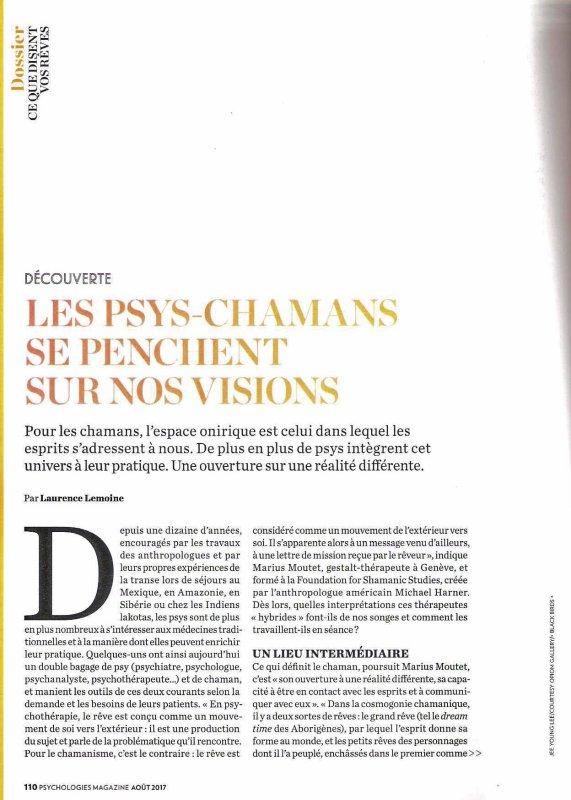 LES PSY-SHAMANS SE PENCHENT SUR NOS VISIONS