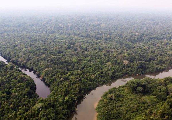 Une tribu inconnue massacrée par des chercheurs d'or en Amazonie