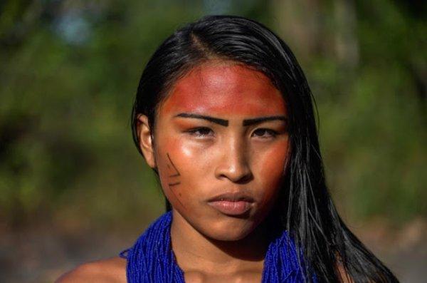 Amazonie: les tribus aiguisent leurs flèches contre les envahisseurs