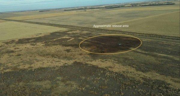 TransCanada essaye de nettoyer une immense fuite de pétrole
