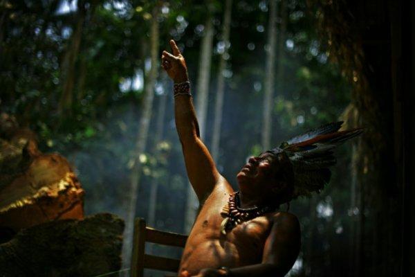 Brésil: Bolsonaro président, une menace pour les territoires autochtones