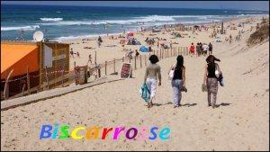 Biscarosse / summer 2011