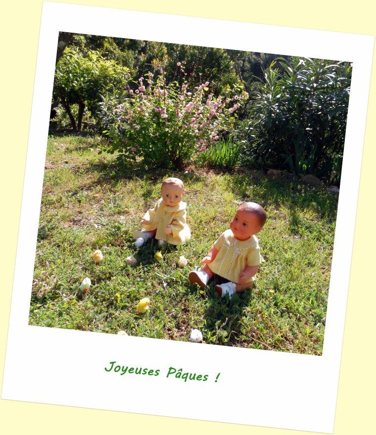 Waouh, ce matin, des poussins dans mon jardin ! !