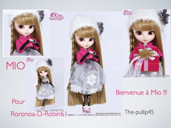 Pour Roronoa-D-Robin61