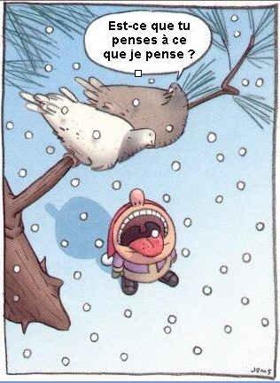 Avoir froid aux arpiots!!!