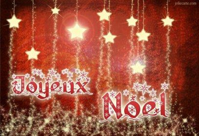 pour cette derniere ligne de fin d'annee un joyeux noel et pour 2012 une bonne annee colombophile et sante