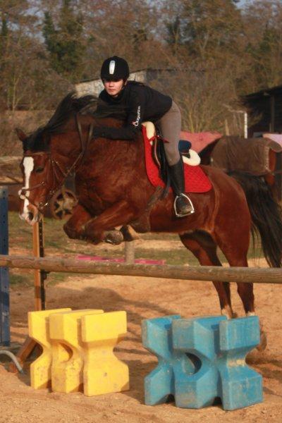 >  Le cheval porte son cavalier avec vigueur et rapidité. Mais c'est le cavalier qui conduit le cheval. Le talent conduit l'artiste à de hauts sommets avec vigueur et rapidité. Mais c'est l'artiste qui maîtrise son talent.