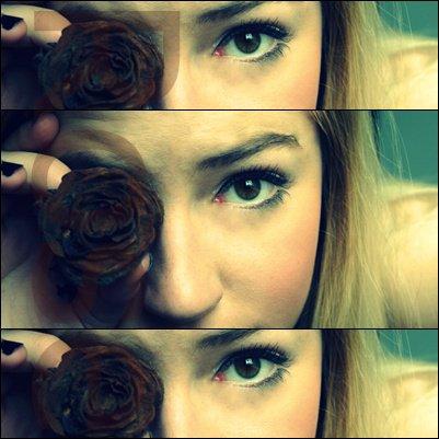 Blast - Rose