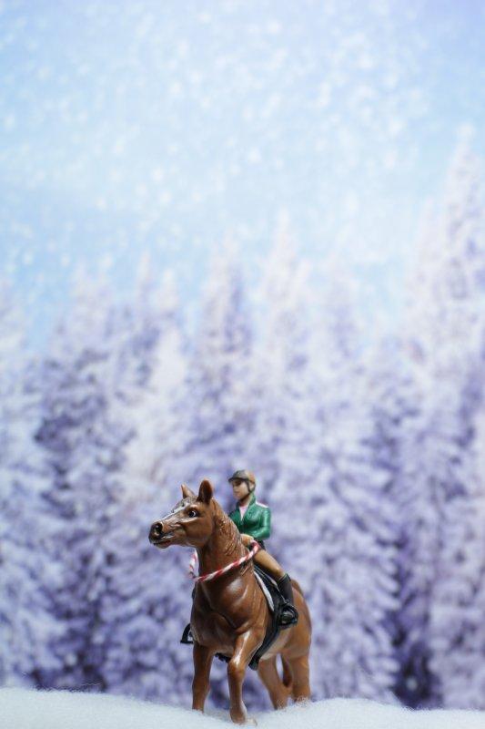 Douce neige ♫♪ (2)  [20/12/16]