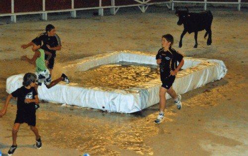 toro picine 2010 a caissargues