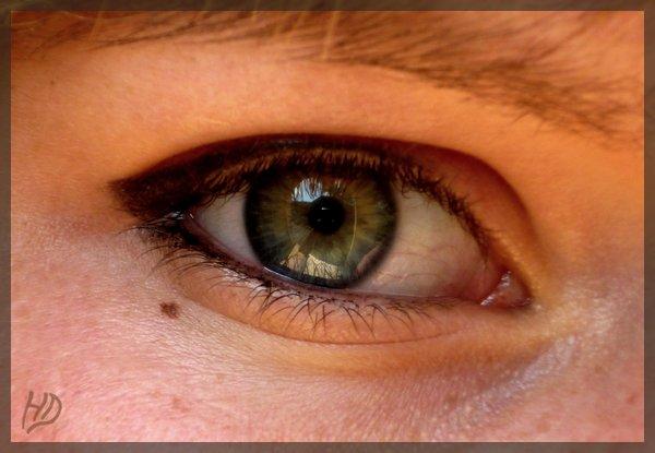 Le language des yeux