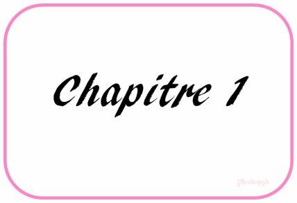 » CHAPITRE 1.