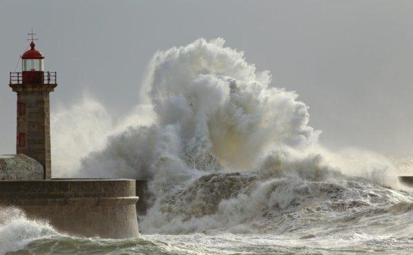 Tempête hivernale. Des vents violents à plus de 130 km/h en Normandie : les prévisions