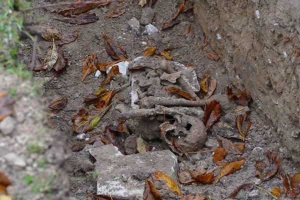 Un sarcophage avec des restes osseux découvert dans les jardins de l'Abbaye du Bec-Hellouin