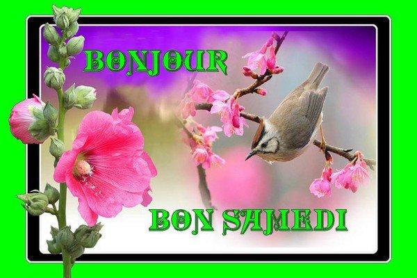 bonjour et bon samedi