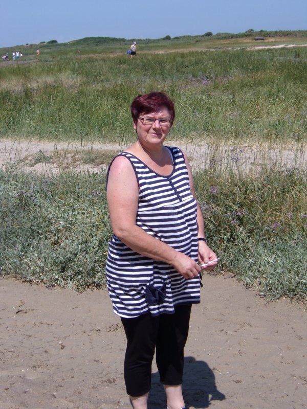 Lilas de mer à la baie d'authie