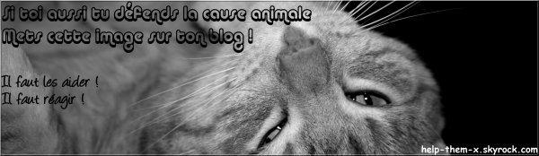 Défense de la cause animale