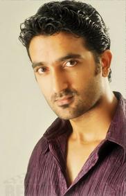 Serial Stars #4 : Krishna