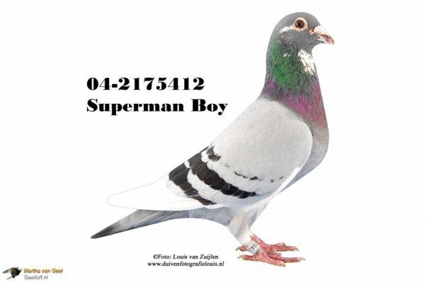 Superman boy de Martha van Geel