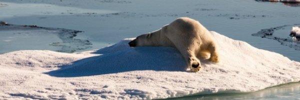 RÉCHAUFFEMENT CLIMATIQUE :-(