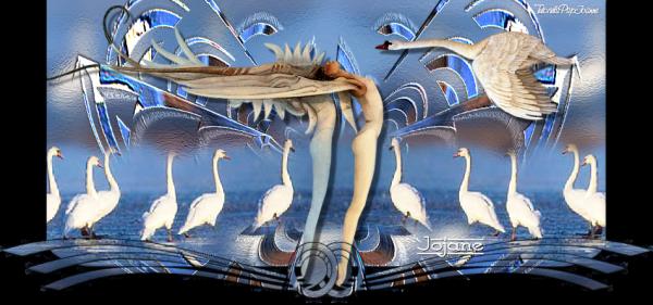 Swan de Joanne