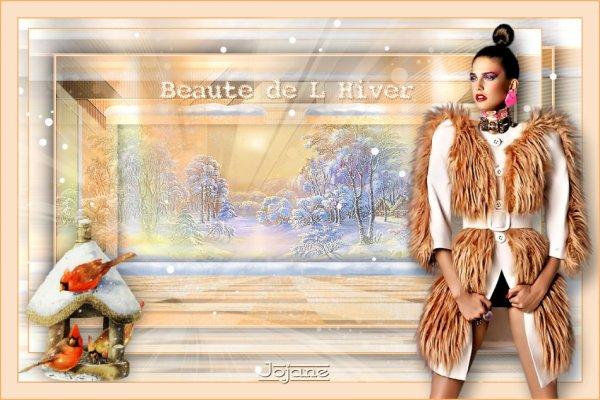 Beauté de l'hiver de Maxou