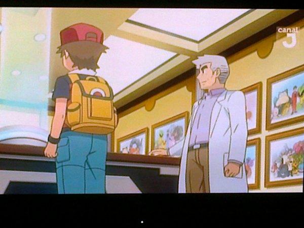 pokemon : les origines