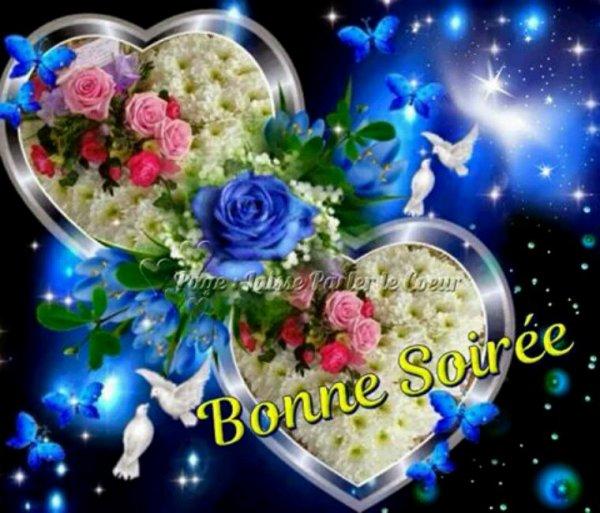 Bonne soirée à tout mes amis