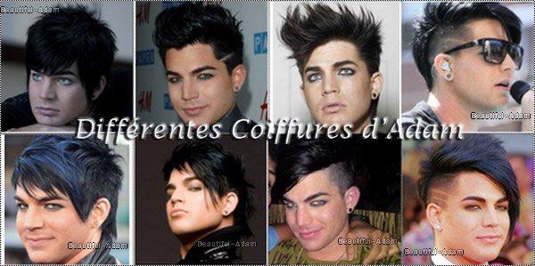 Welcome on BeautifulAdam : Ta Source sur le Talentueux Adam  ♥