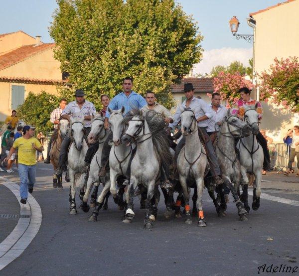 Eyragues le Vendredi 20 Aout 2010