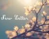 New Letter ♥