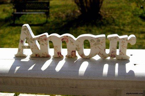 • Amour: composé de 5 lettres, 3 voyelles, 2 consonnes et surtout 2 idiots♥