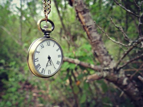 • On se rend compte souvent trop tard que le temps perdu est difficilement rattrapable  ♥