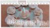 Recette : Cup cakes à la framboise