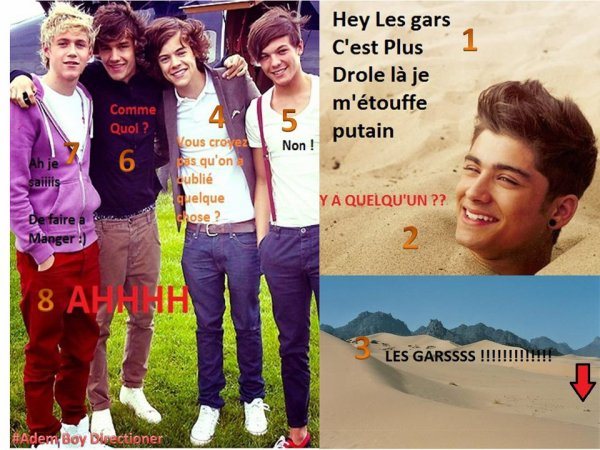 photo drole one direction