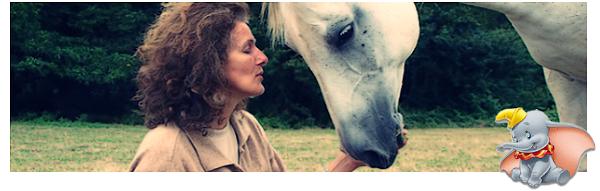 . Un nouvel univers s'offre à toi... ♥ découvre la communication animale .