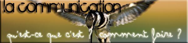 .   ☼ Rubrique 1 : La Communication Animale en général. .