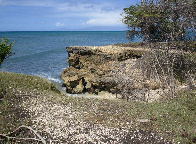 sentier de Grande Savane, littoral de Grand-Bourg